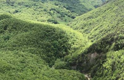 Riserva Regionale e Oasi WWF Bosco Rocconi
