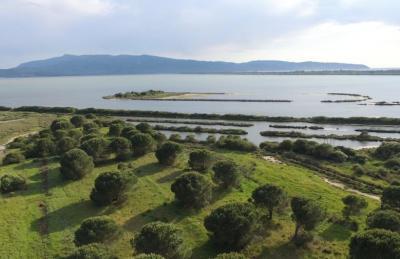 Riserva Naturale e Oasi WWF Laguna di Ponente di Orbetello